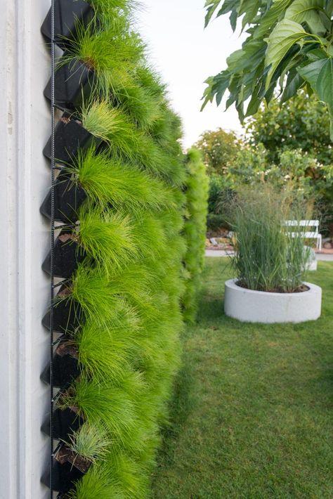 گلدان دیوار سبز برای تزیین دیوار
